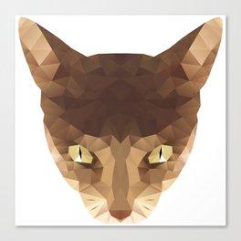 triangular cat Canvas Print
