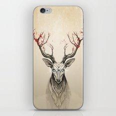 Deer tree iPhone & iPod Skin