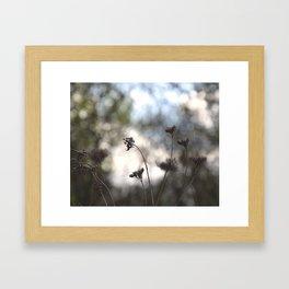 Roseau Framed Art Print