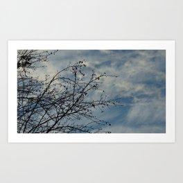 sky by Art Print