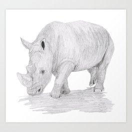 Rhino Pencil Sketch Art Print