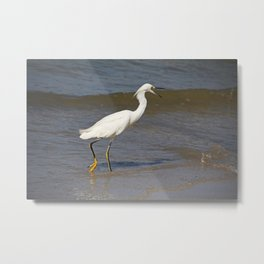 Crazy on the Coast Metal Print