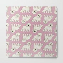 Bichon Frise Dog Pattern  Metal Print