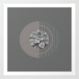 Nature Meets Geometry Circles Art Print
