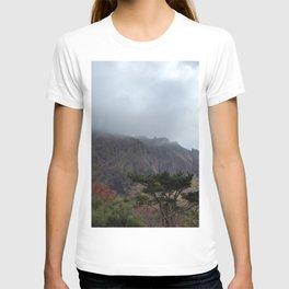 Halla-Mountain, Autumn in Yeongsil Valley with mountain fog, Jeju Island, Korea. T-shirt