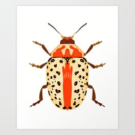 White and Orange Beetle Art Print