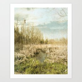 Peace and Solitude.   Art Print