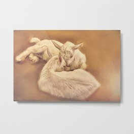 puppy goat in the farm Metal Print