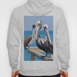 Larry, Curly and Moe Pelicans Hoody