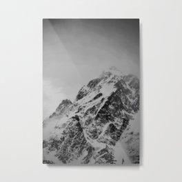 Grey Scale Metal Print
