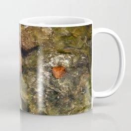 Leaf in a burn Coffee Mug