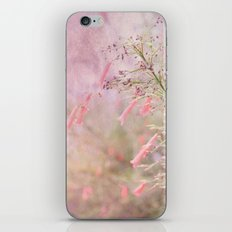 Through the Dreams of Pink iPhone & iPod Skin