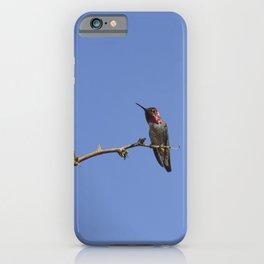 Beautiful Hummer - II iPhone Case