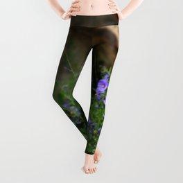 Wildflowers Leggings