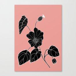 Desert Lantern - Abutilon leucopetalum Canvas Print