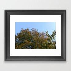 Look Up More Often Framed Art Print