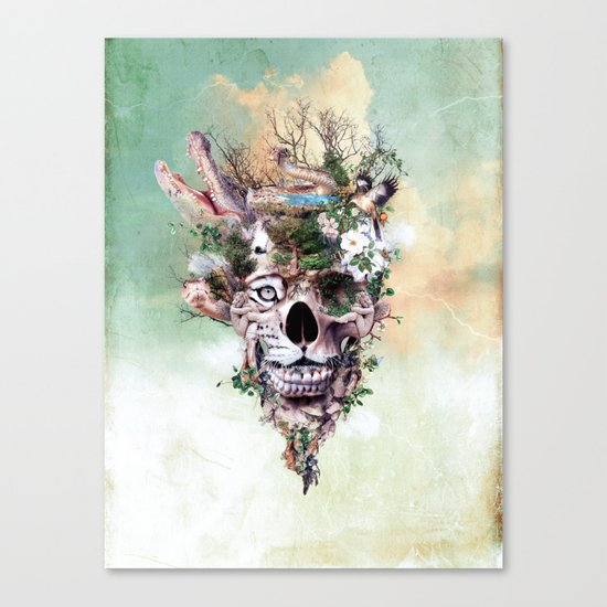 Nature Skull II Canvas Print