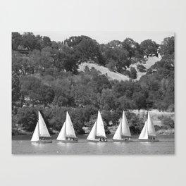 Line-em-up! Canvas Print