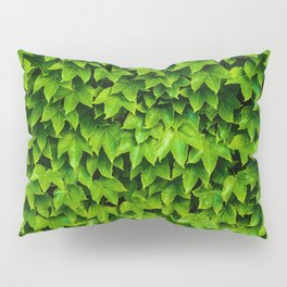 Greenery Luck (Color) Pillow Sham
