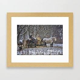 Feeding in The Snow Framed Art Print