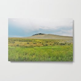 Flood Plains Metal Print