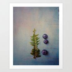 Fern and Blueberries Art Print