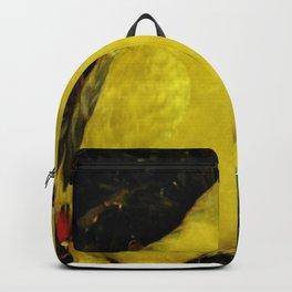 Rock Pebbler Backpack