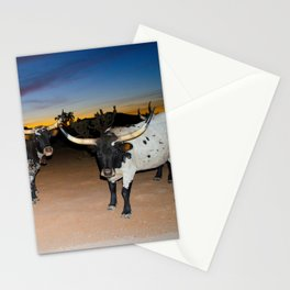 Bulls Night Out Stationery Cards