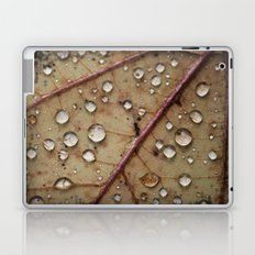 A Close Up Of A Wet Leaf Laptop & iPad Skin