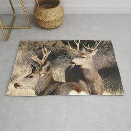 Watercolor Deer, Mule 16, Crestone, Colorado, The Disturbance Rug