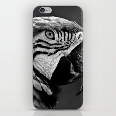 Black & White Parrot  iPhone & iPod Skin
