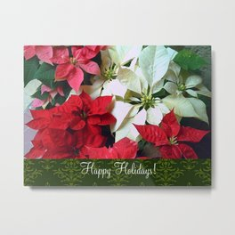 Mixed color Poinsettias 1 Happy Holidays S6F1 Metal Print