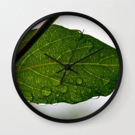 Wet leaf Wall Clock