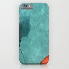 Cayman Islands stingray in Caribbean iPhone Case
