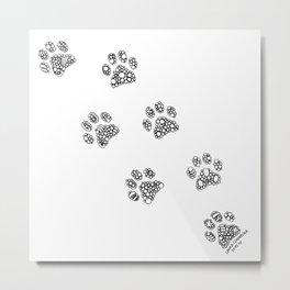Cat tracks Metal Print