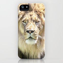Lions Mane iPhone Case