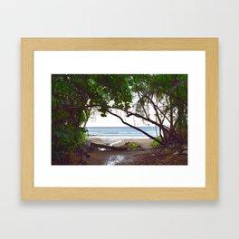 Playa Tamarindo Framed Art Print