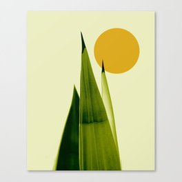 Arriba Canvas Print