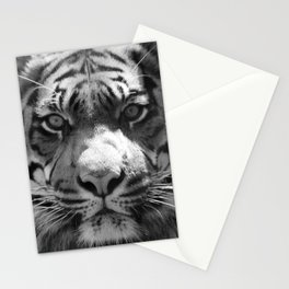 The eye of the tiger II (vintage) Stationery Cards