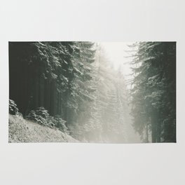 Forest Road In Winter Rug