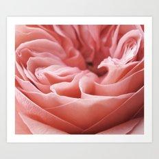 Blushing Swirl Art Print