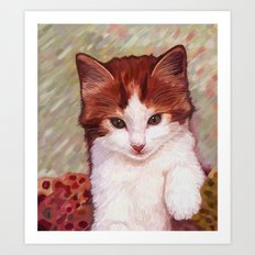 Copper kitten Art Print