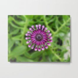 Hippy Flower Friend Metal Print