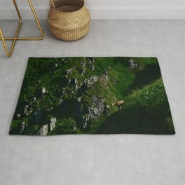Spotted Rug