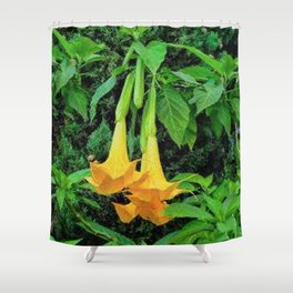 TROPICAL GOLDEN ANGEL TRUMPET FLOWERS Shower Curtain