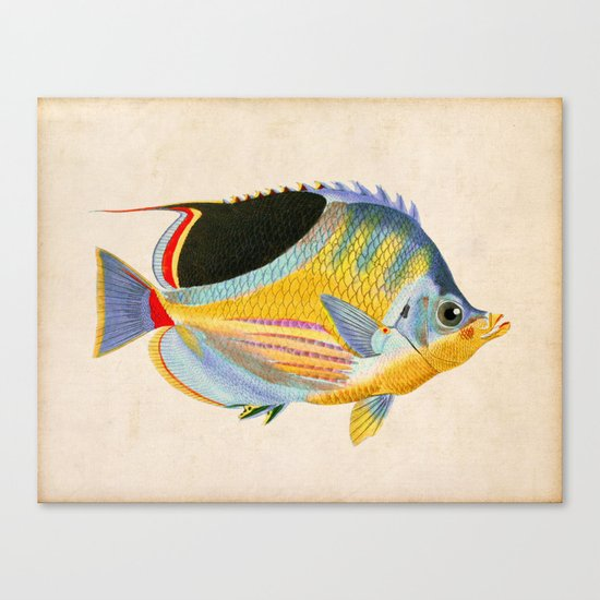 Yellow Fish Canvas Print