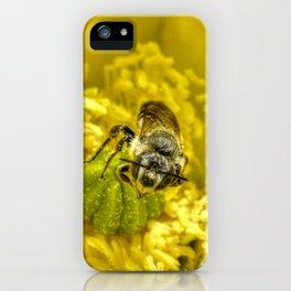 Rainy Day Cactus Flower Bee iPhone Case