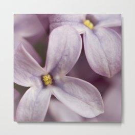 Lilac macro Metal Print