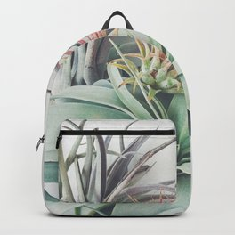 Air Plant Collection II Backpack