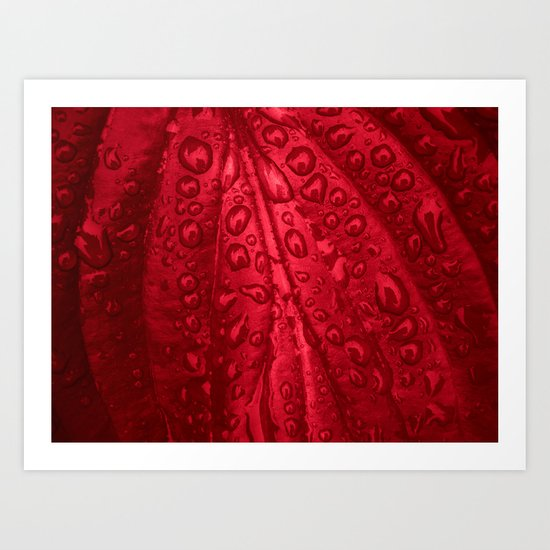 red passion I Art Print
